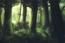 avatar_Кирихио